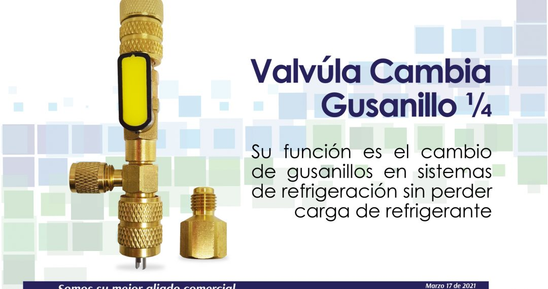 VALVULA-CAMBIO-GUSANILLO